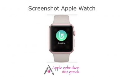 Screenshot Apple Watch